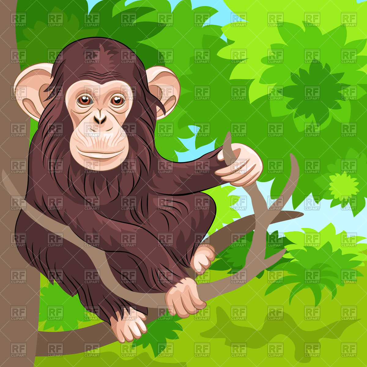 Branch clipart jungle 94 Top Clipart Free Clipart