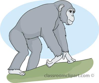 Chimpanzee clipart moneky 47 Chimpanzee Clipart Image Clipart