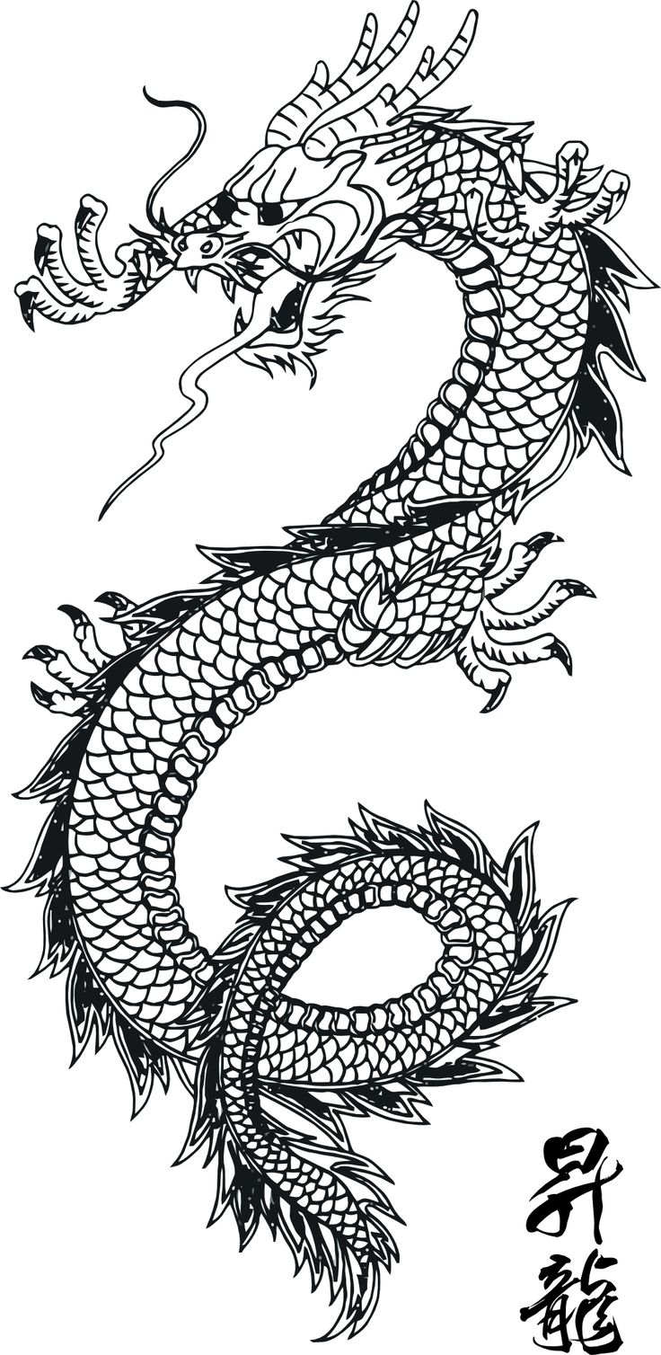 Chinese Dragon clipart printable Coloring Pages Coloring Dragon Art