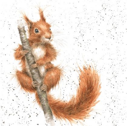Horse Racing clipart wild animal Chipmunk Squirrel 178 Pin on