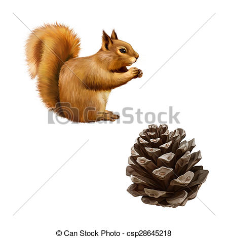 Drawn rodent simple Eating (Sciurus isolated Red Squirrel