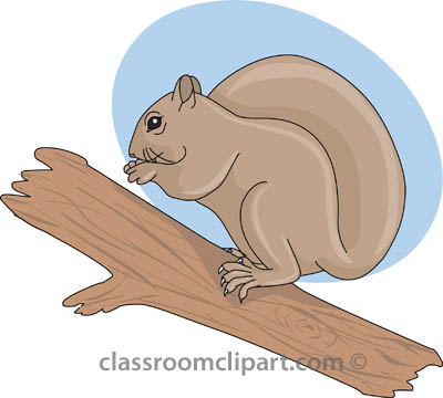 Tree clipart squirrel #4