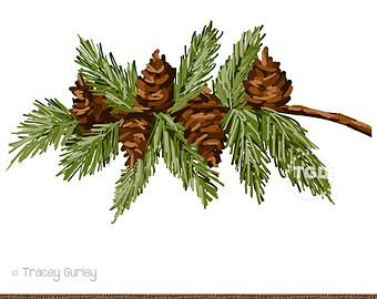 Branch clipart pinecone Pine Cones clip with Etsy