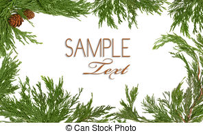 Pine Cone clipart snowy 786  Pinecone Images Frame