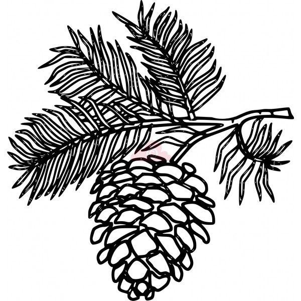 Drawn pine cone Bing https://www line bing stencils