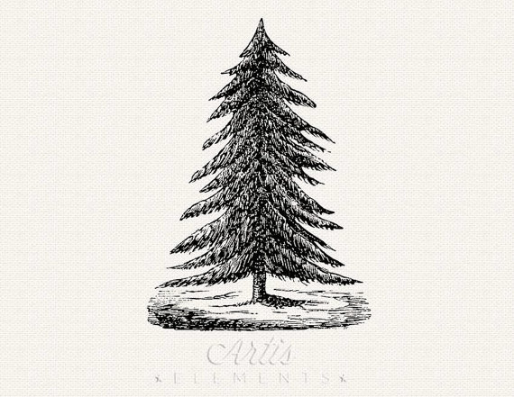 Christmas Tree clipart vintage Christmas Vintage Evergreen JPG