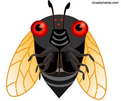 Cicada clipart cute Cicadas Pinterest Design Cicadas Cute