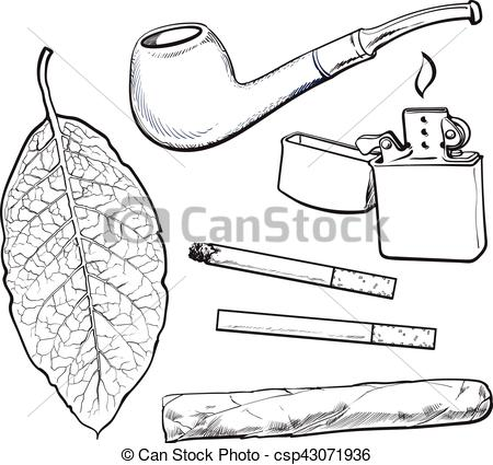 Cigar clipart tobacco pipe Vectors tobacco and cigar leaf