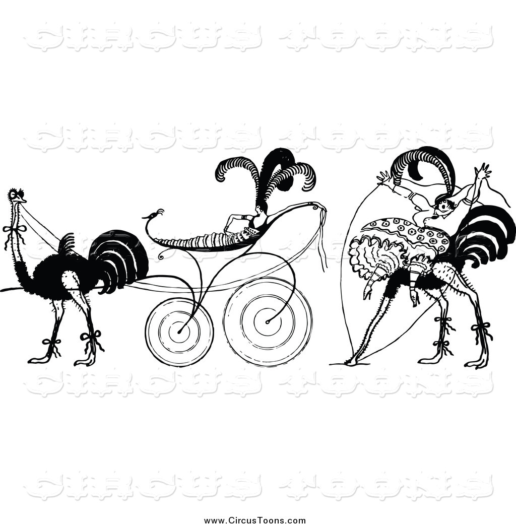 Bird clipart circus Designs Ladies Birds Circus and