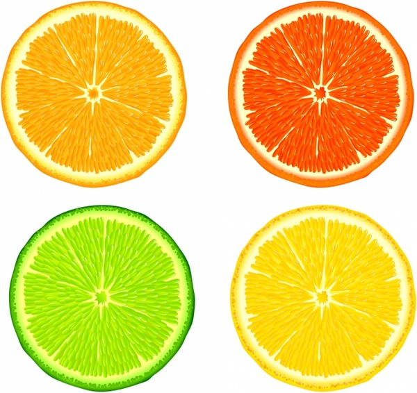 Citrus clipart sliced  Slices (4 free Free