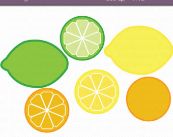 Citrus clipart orange fruit Clipart Lemon Clipart INSTANT Etsy
