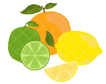 Citrus clipart Clip clip Set Fruits Clipart