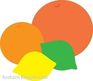 Citrus clipart 20clipart Clipart Citrus Free citrus%20clipart