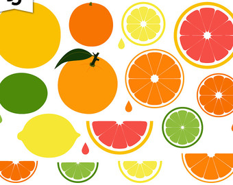 Grapefruit clipart orange wedge Citrus Slice Lemon Grapefruit Etsy