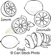 Citrus clipart black and white  isolated royalty set Clipart