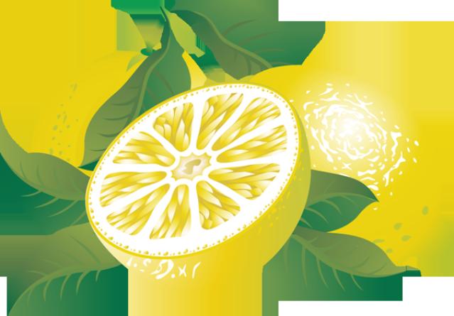 Wreath clipart citrus Clipart Clipartix Free citrus Lemon