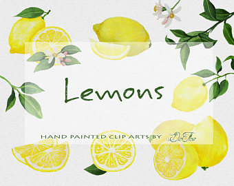 Lemon clipart painted Lemon Yellow Wedding Clipart Watercolor