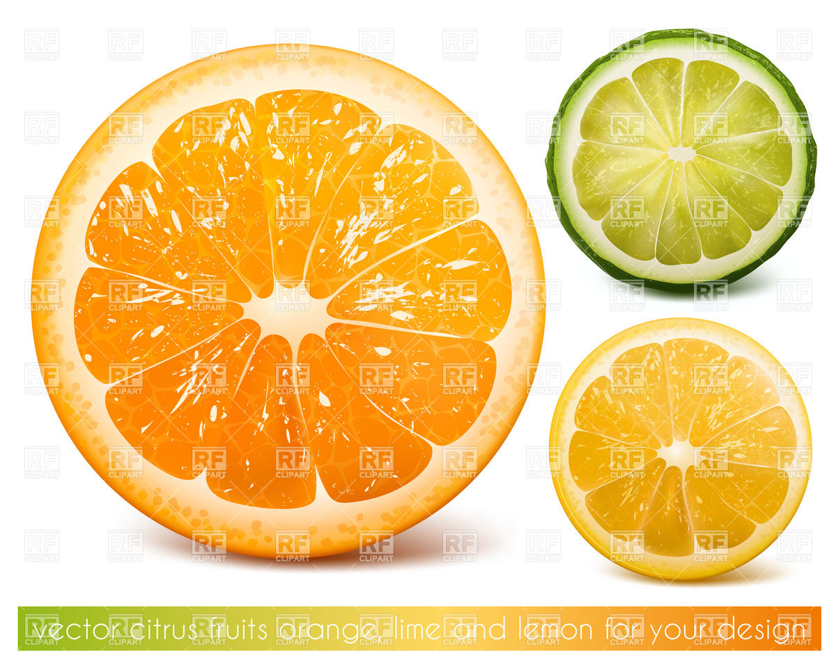 Citrus clipart orange fruit AZClipart 10 clipart cut com