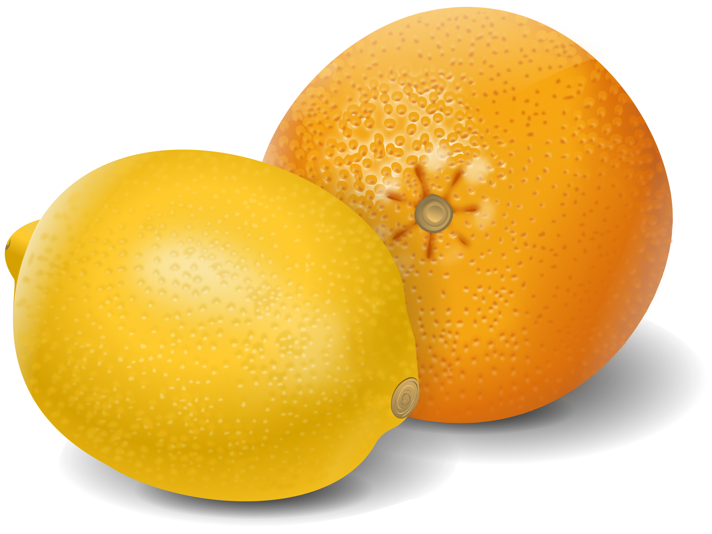Citrus clipart orange fruit Orange lemon Clipart lemon fruits