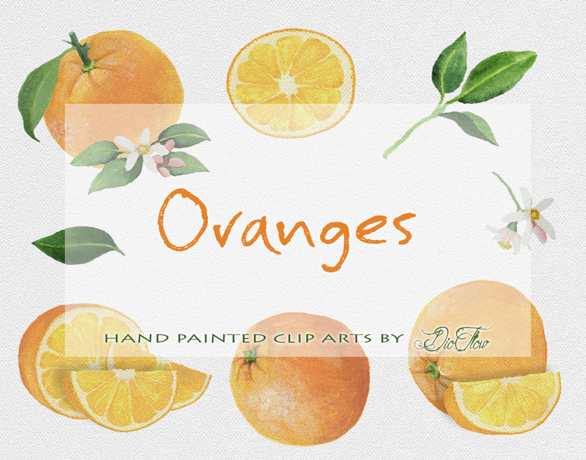 Citrus clipart orange fruit  Fruits Clipart Orange Fruit