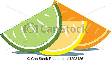 Citrus clipart sliced  of Fruit Slices of