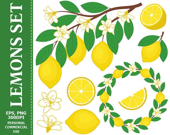 Wreath clipart citrus Clip Lemons Digital Branch 70%
