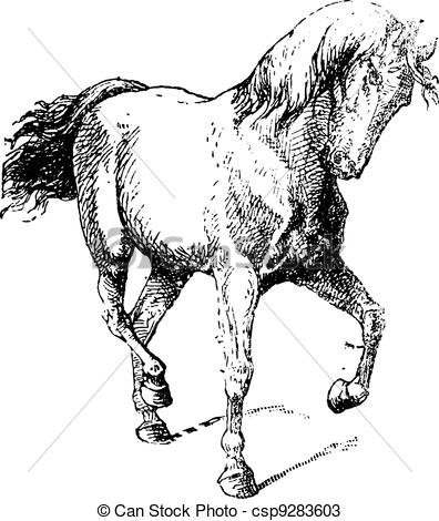 Classical clipart vintage horse Dressage Training Movements Horse vintage