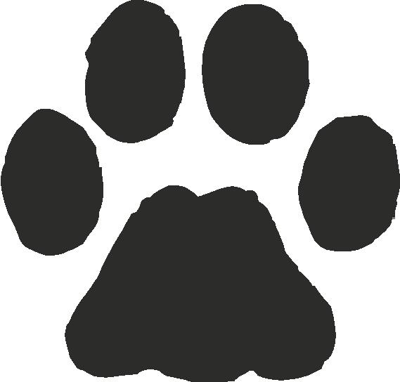 Footprint clipart bobcat Cat Paw Bobcat  Art