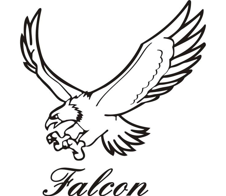 Falcon clipart peregrine falcon Clipart use peregrine online Drawings