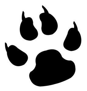 Footprint clipart dog Clipart Tiger Clipart  And
