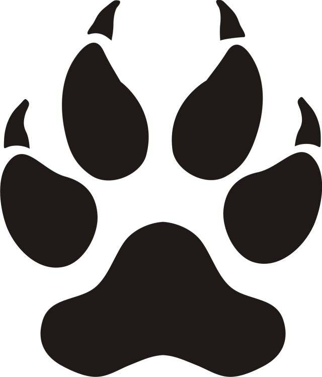 Paw clipart panthers Clip Art clipart: Images Paw