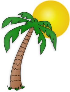 Drawn palm tree animated #12