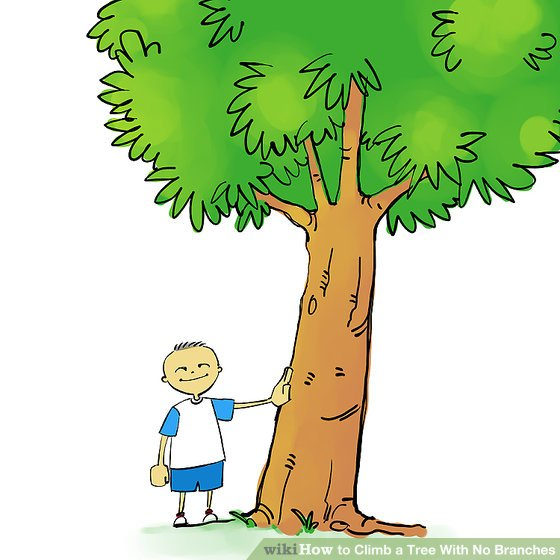 Climbing Tree clipart Tree Steps Pictures) No your