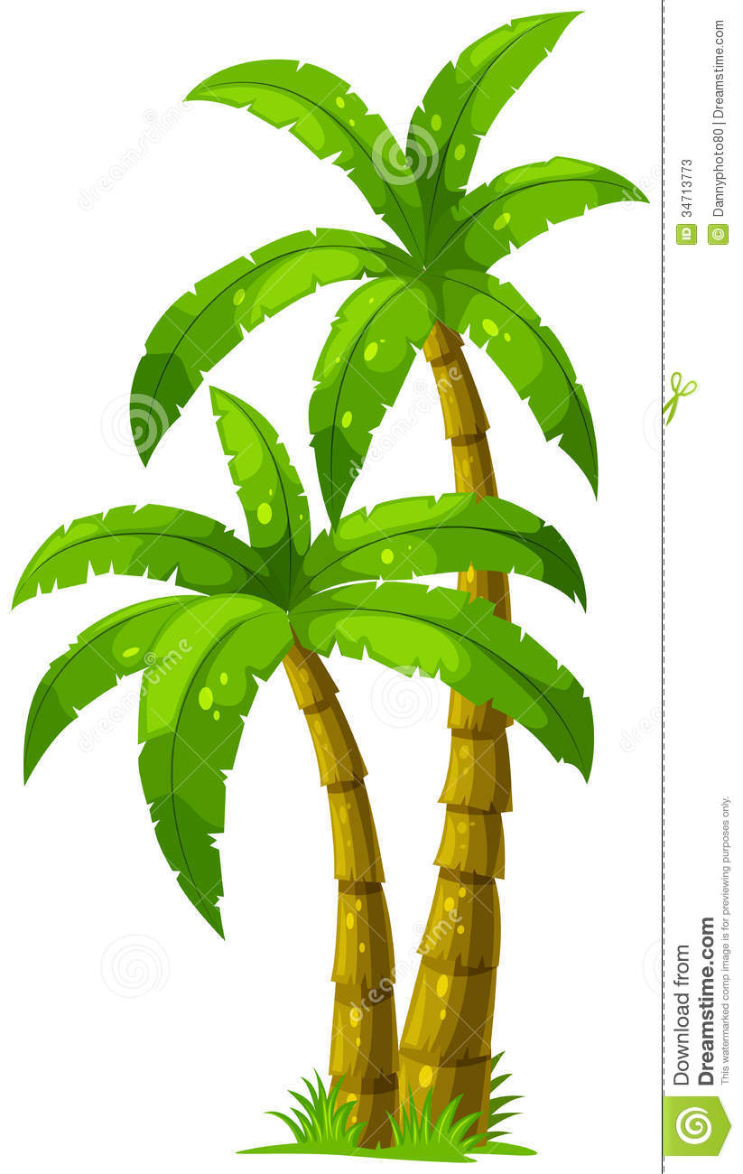 Drawn palm tree illustrator #14
