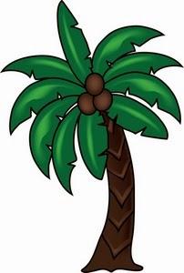 Trunk clipart coconut tree #1