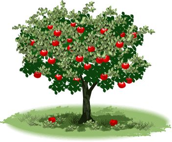Tree clipart rose apple #1