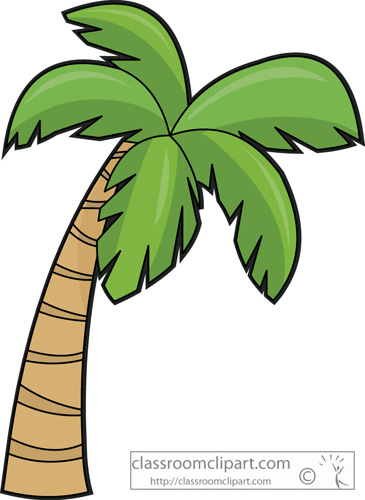 Drawn palm tree jungle tree #15