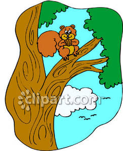 Tree clipart squirrel #1