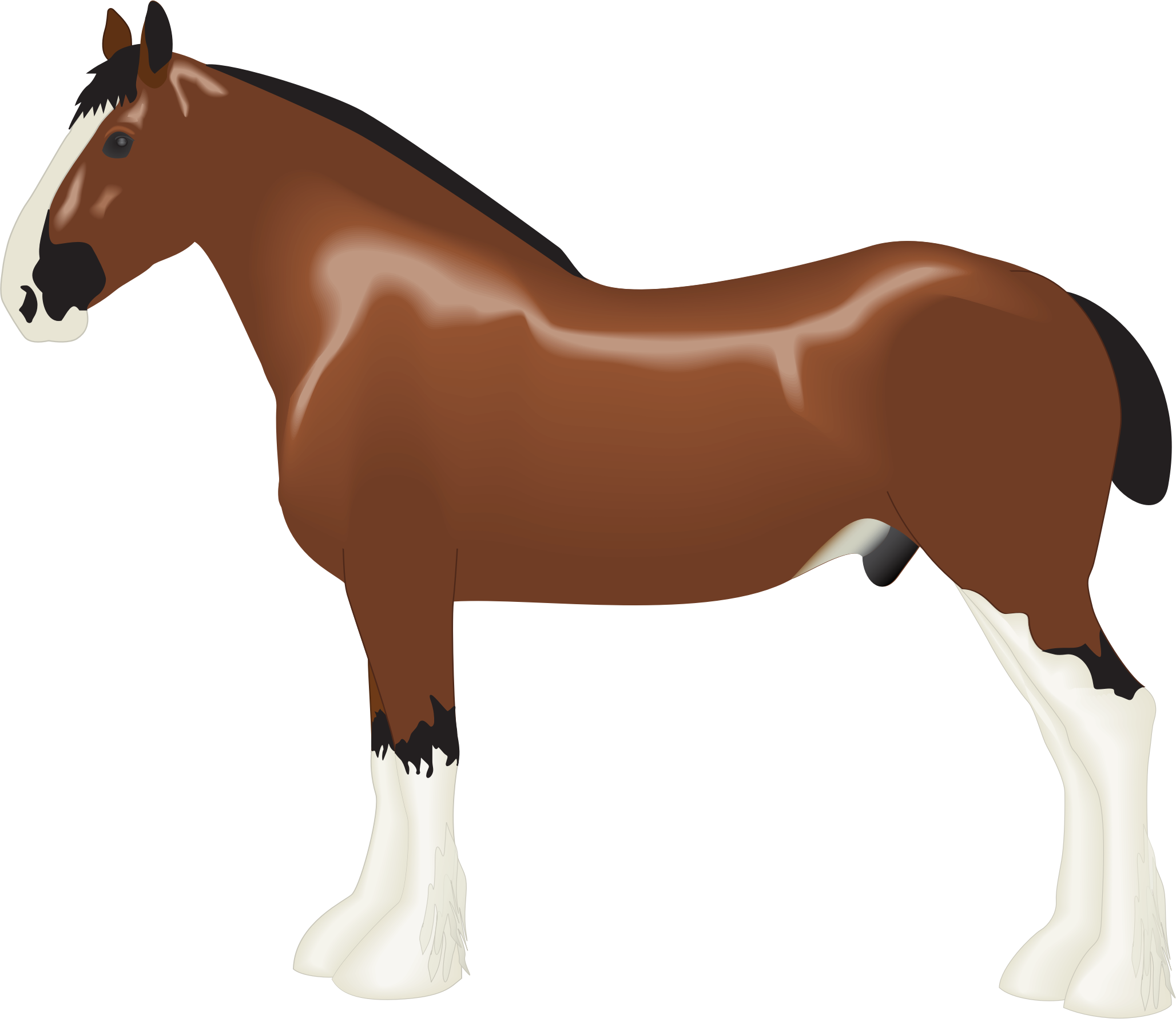Drawn horse Clydesdale Horse Clipart Horse Clydesdale