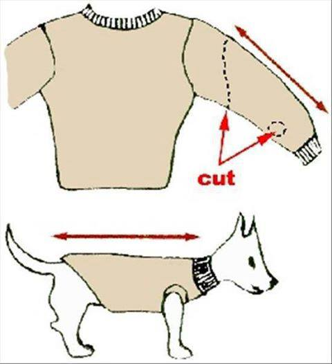 Coat clipart old clothes Ideas  Dog Heart work