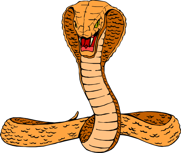 Reptile clipart cobra #6