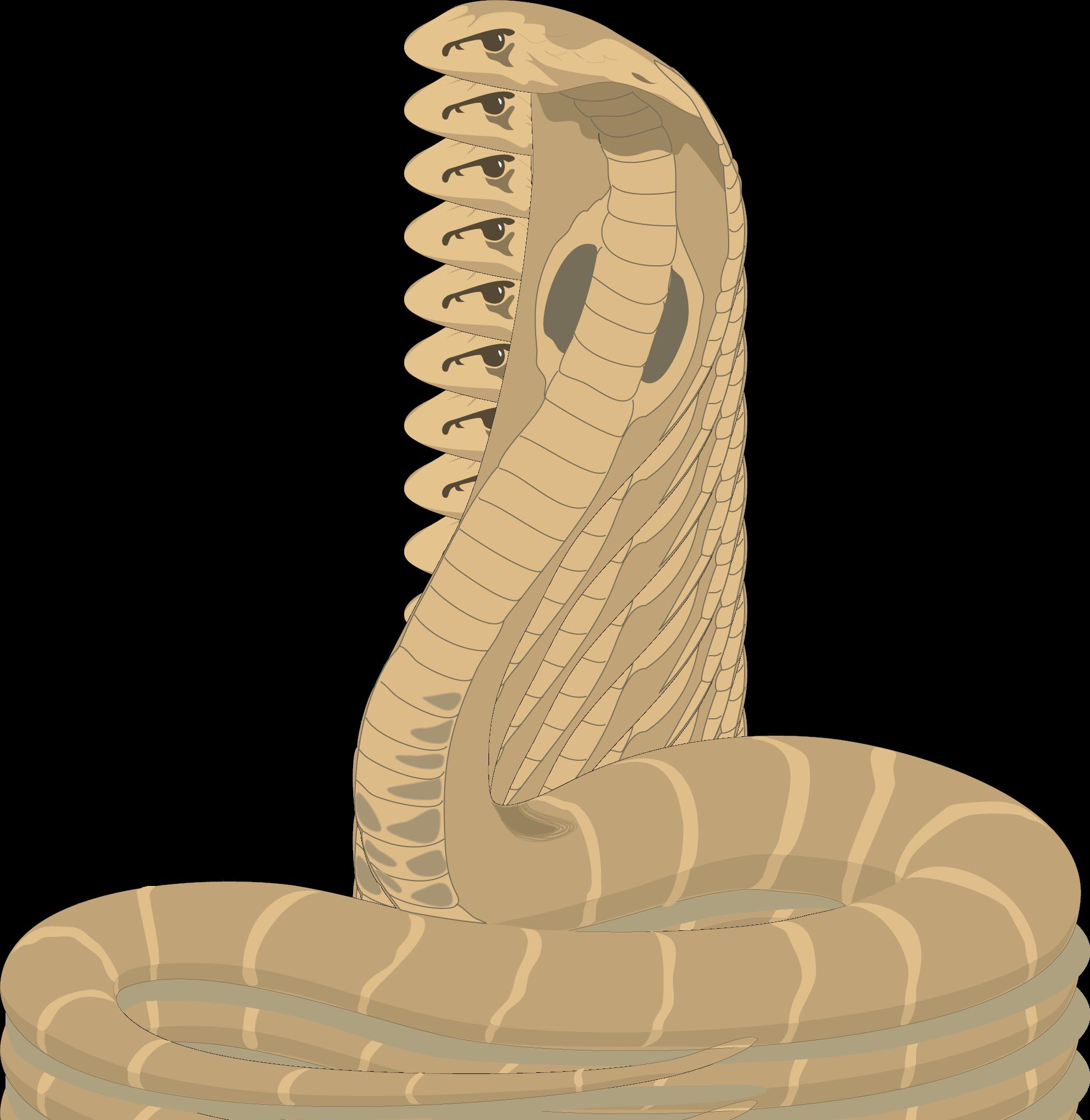 King Cobra clipart Art Cobra Clip Free Download