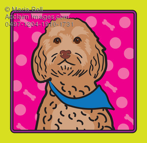 Cockapoo clipart Photography Images & cockapoo stock