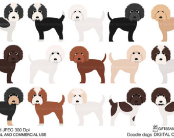 Cockapoo clipart For and clip Doodle use