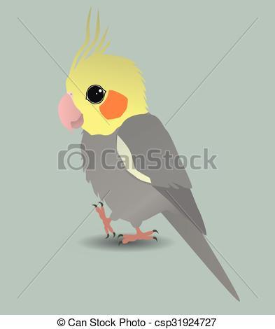 Cockatiel clipart Cockatiel 51 parrot cockatiel Illustrations