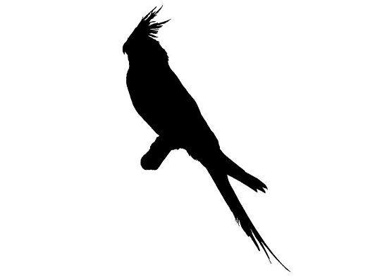 Brds clipart cockatiel And Die Custom Art Silhouette