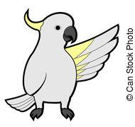 Cockatoo clipart Download Cockatoo clipart clipart #19
