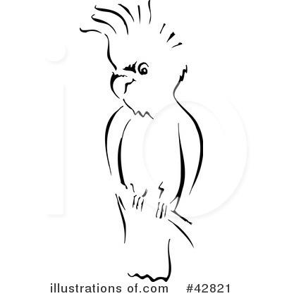 Cockatoo clipart Clipart Cockatoo Royalty Designs Stock