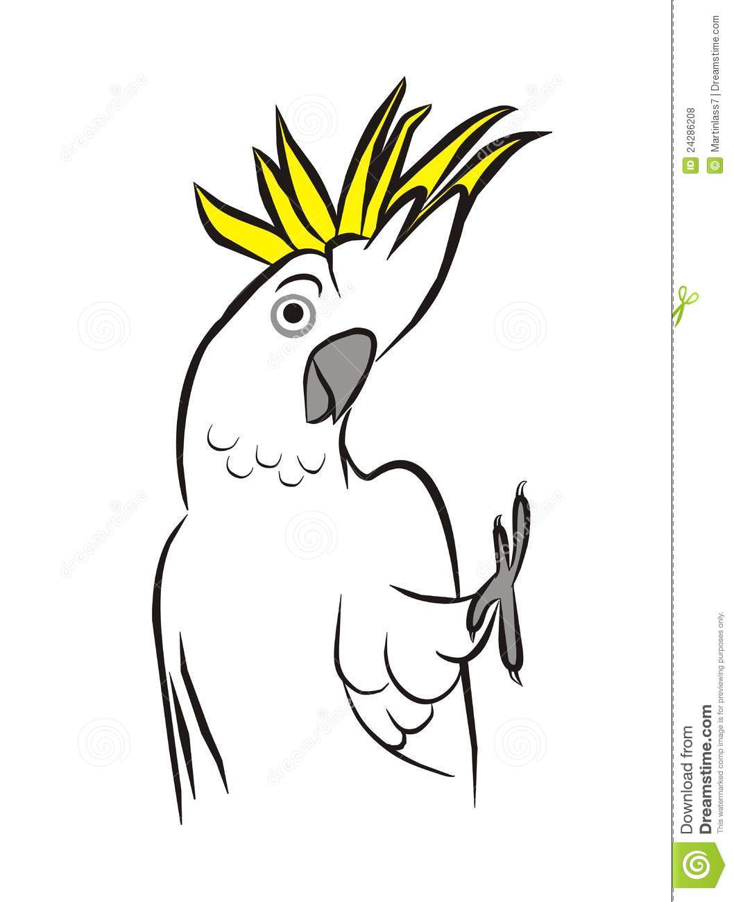 Cockatoo clipart Crested clipart Sulphur clipart crested