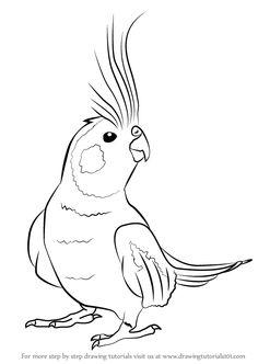 Drawn brds cute pet Silhouettes Clipart (3) Bird